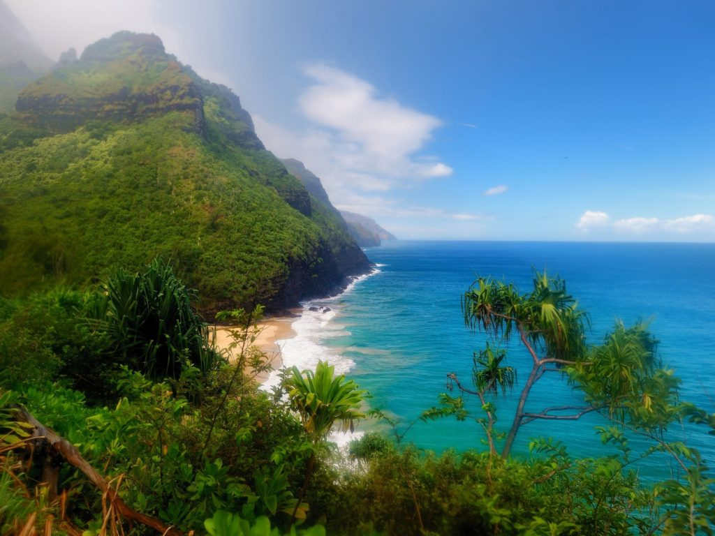 Ocean views and dense forests await you in Hawaii.